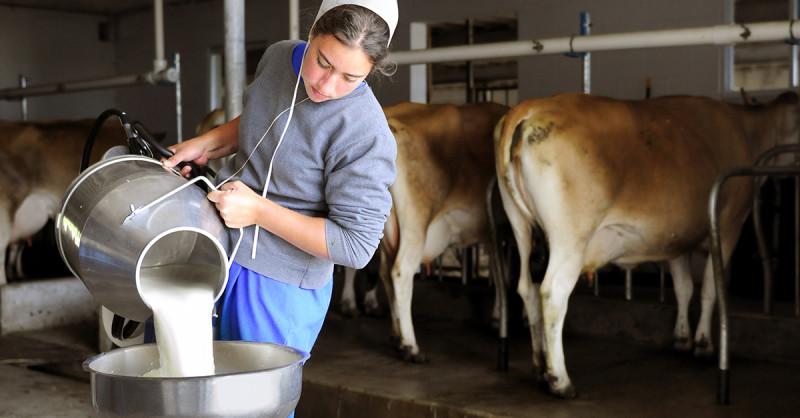 какая нержавеющая сталь используется в молочной промышленности