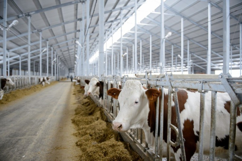 нержавейка в сельском хозяйстве